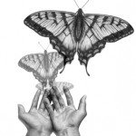 releasing_butterflies-150x150